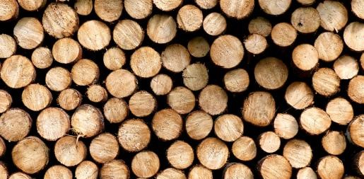 Holzstäbe